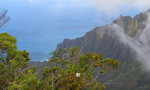 Bed And Breakfast Waimea Kauai