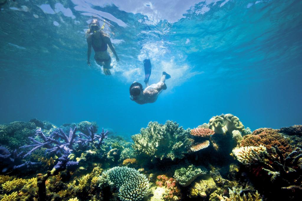 Lizard Island Australien