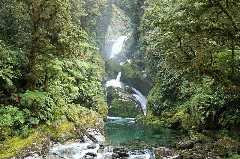 Wasserfall_Milford_Track