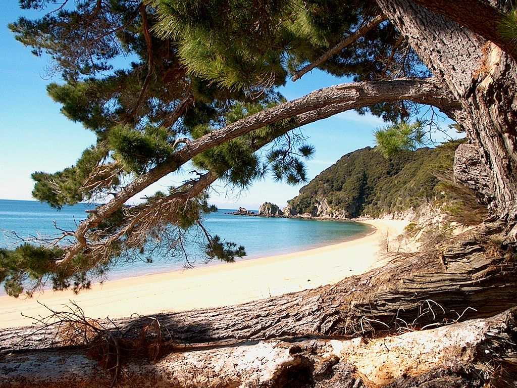 AbelTasmanBeach