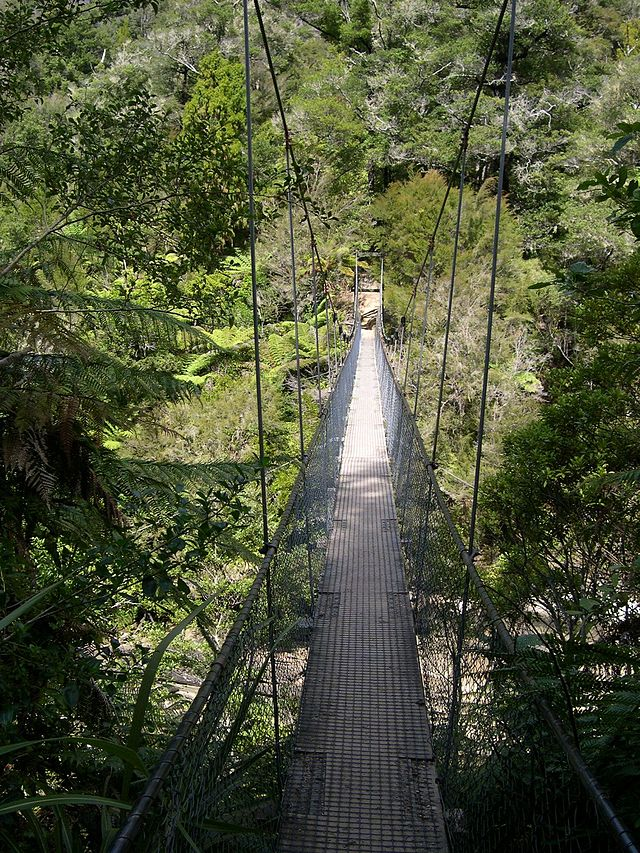 Abeltasmann_swingbridge