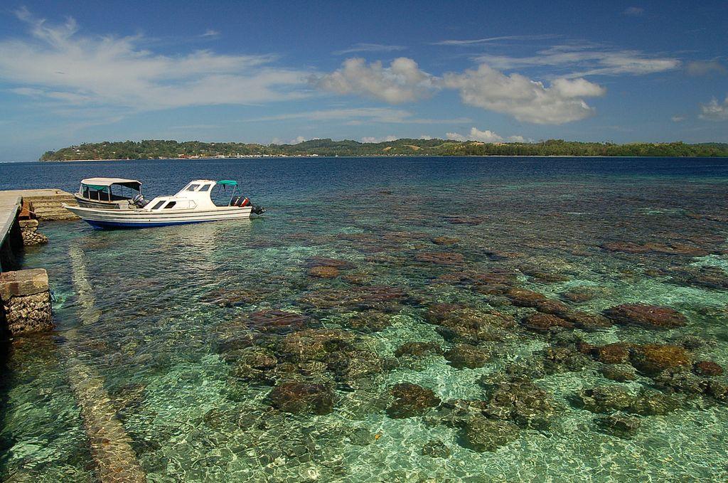 Korallenriff-Gizo