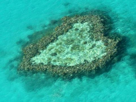 Heart_Reef_Australien