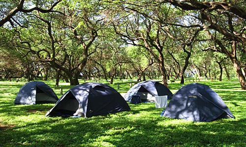 camping_reise_hawaii_4