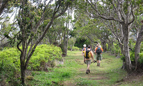 camping_reise_hawaii_5