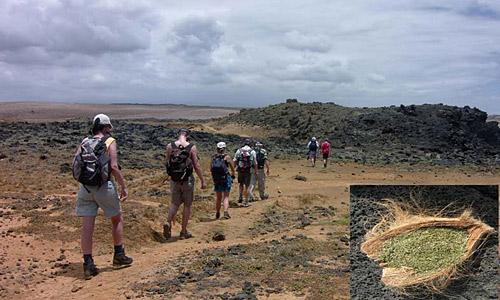 camping_reise_hawaii_6