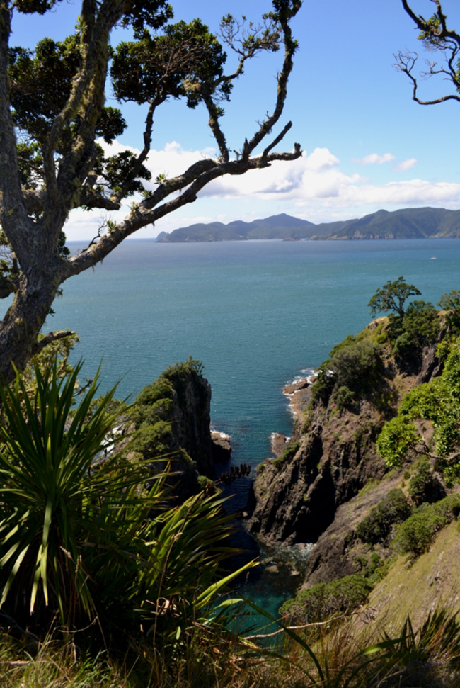 Wanderung in Neuseeland