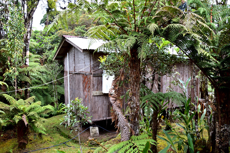 Kumul Lodge PNG