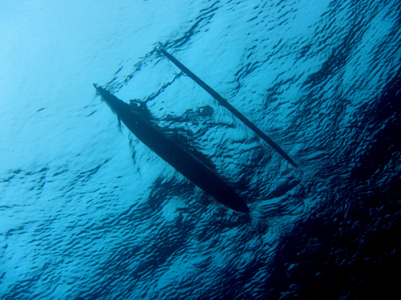 Tauchen Tawali - Einbaumboot von unten