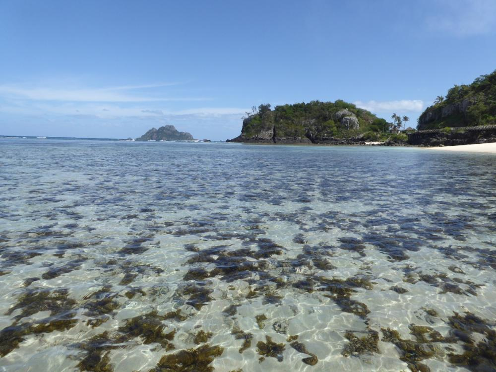 Schnorcheln Fijis
