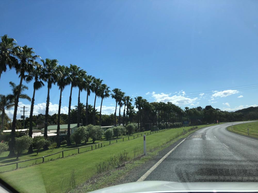 Im Mietwagen unterwegs in Australien