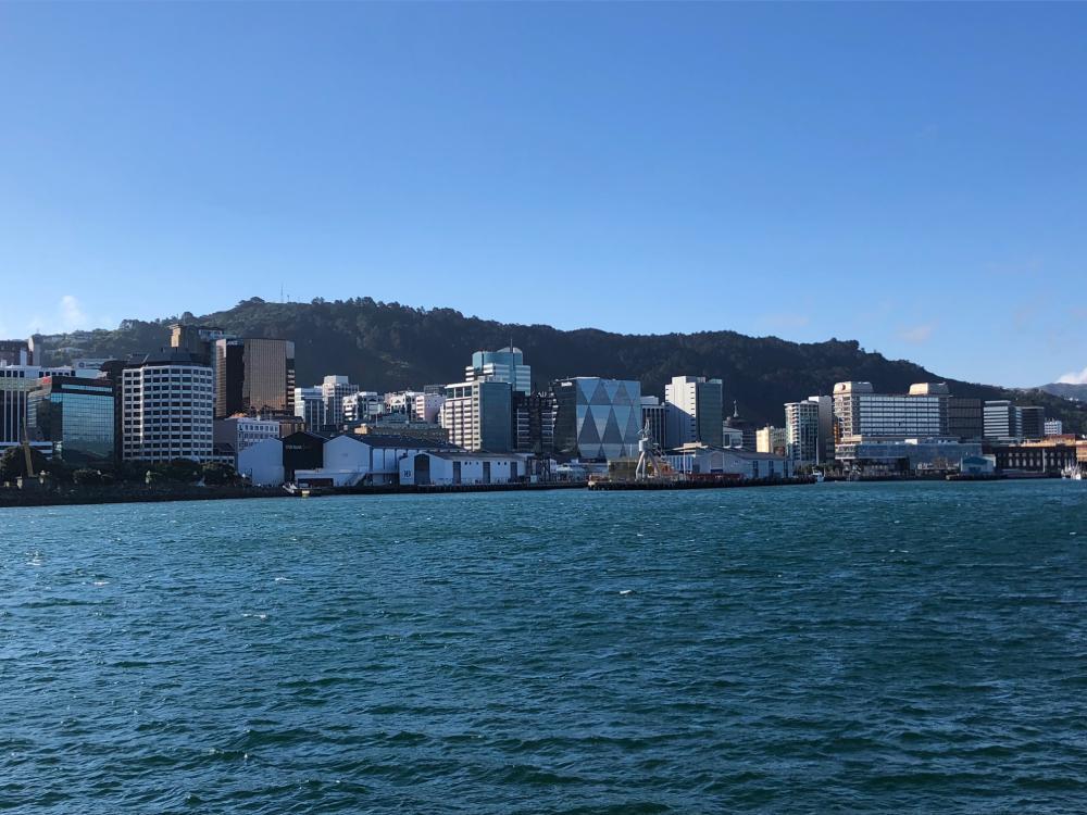 Wellington vom Wasser aus