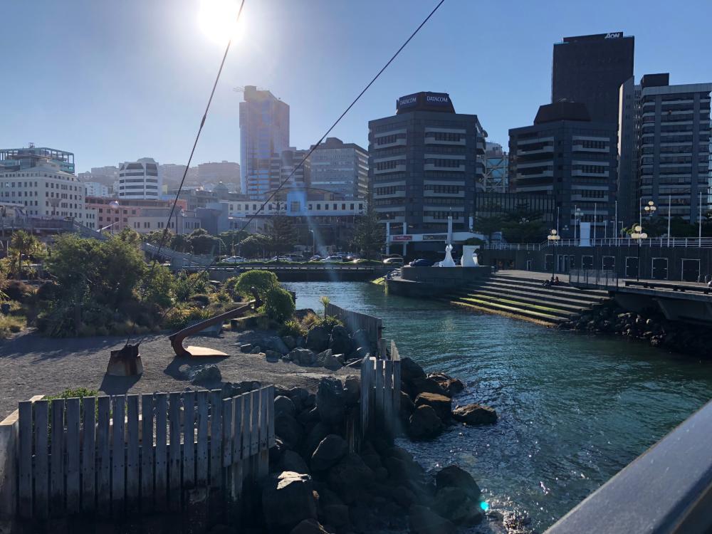 Skyline von Wellington