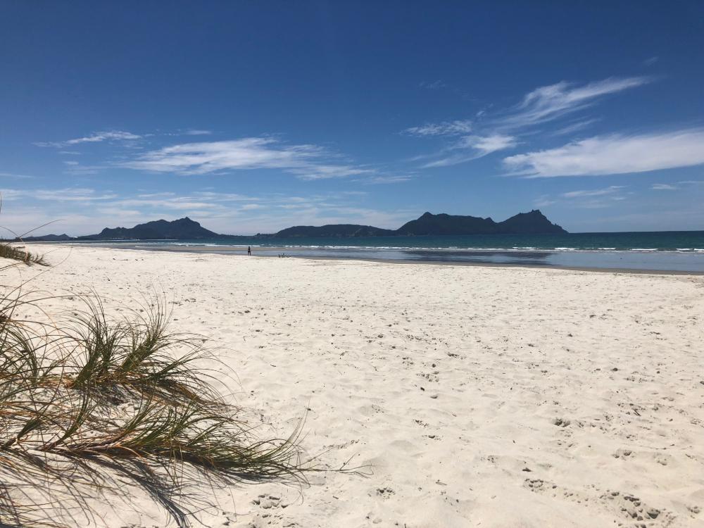 Whangarei Beach