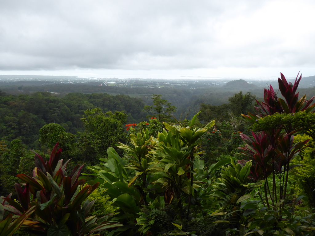 Aussicht auf Apia