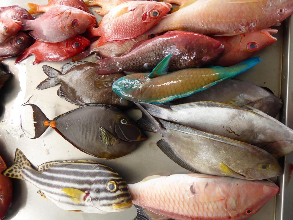 Fischmarkt in Apia