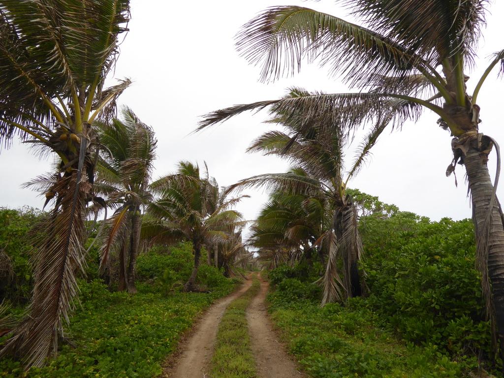 Wandern im Süden Atius / Cook Inseln