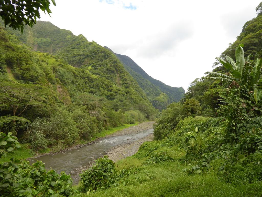 Papenoo-Valley Tahiti