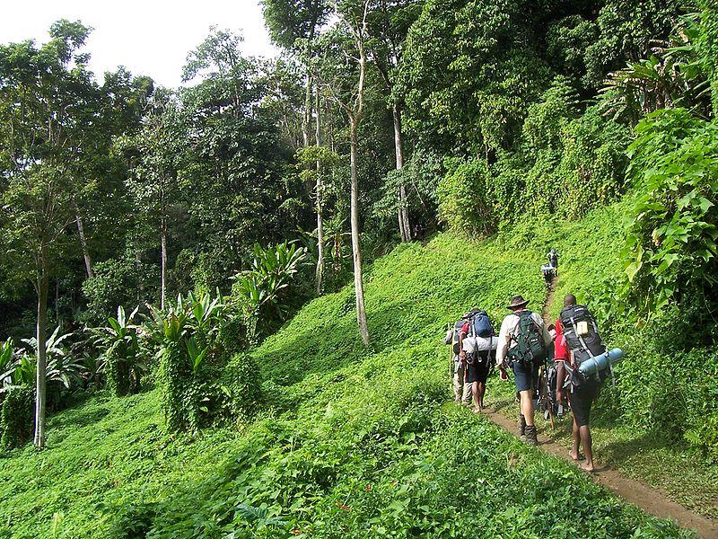 Touristen auf dem Kokoda Track