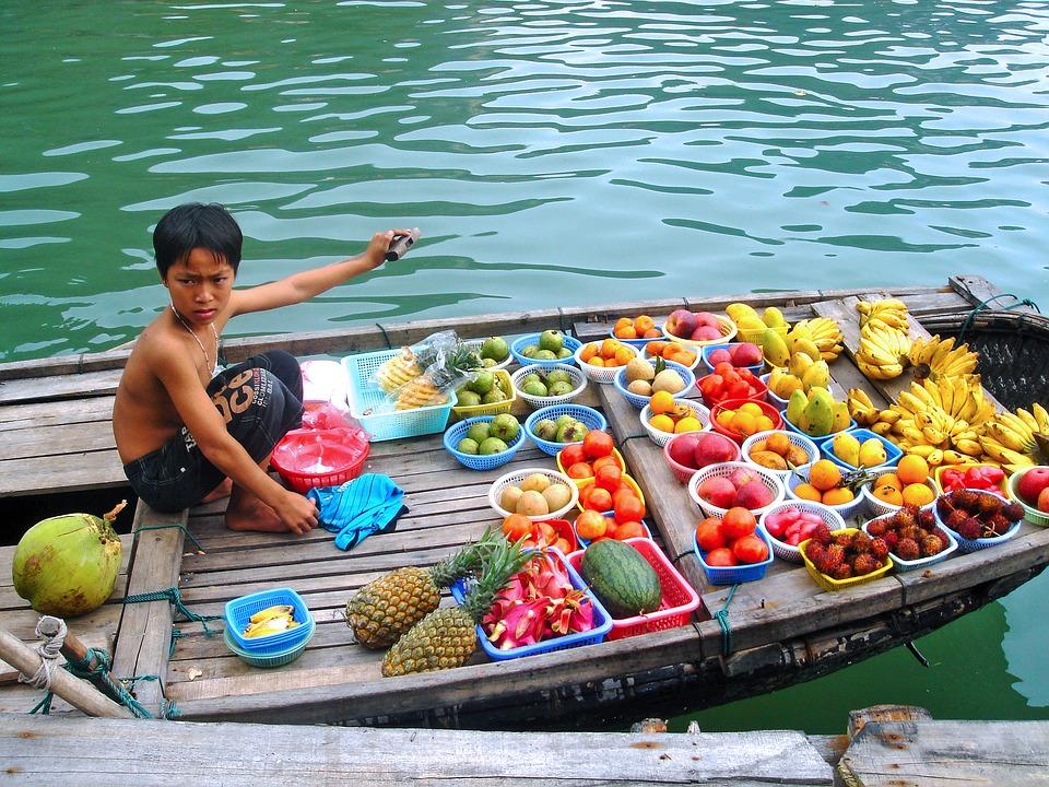 Früchteverkauf in der Halong Bucht