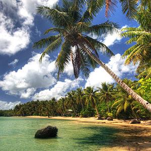 Die schönsten Reisen nach Mikronesien - Überblick