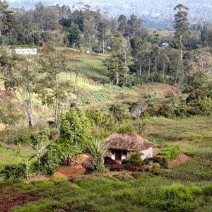 Die schönsten Reisen nach Papua-Neuguinea - Überblick