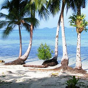 Die schönsten Salomonen-Reisen - Überblick