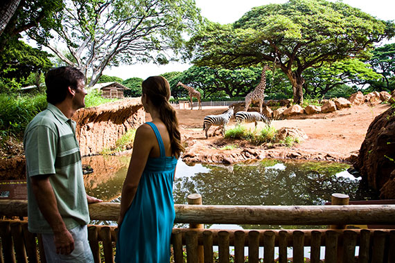 Honolulu-Zoo.jpg
