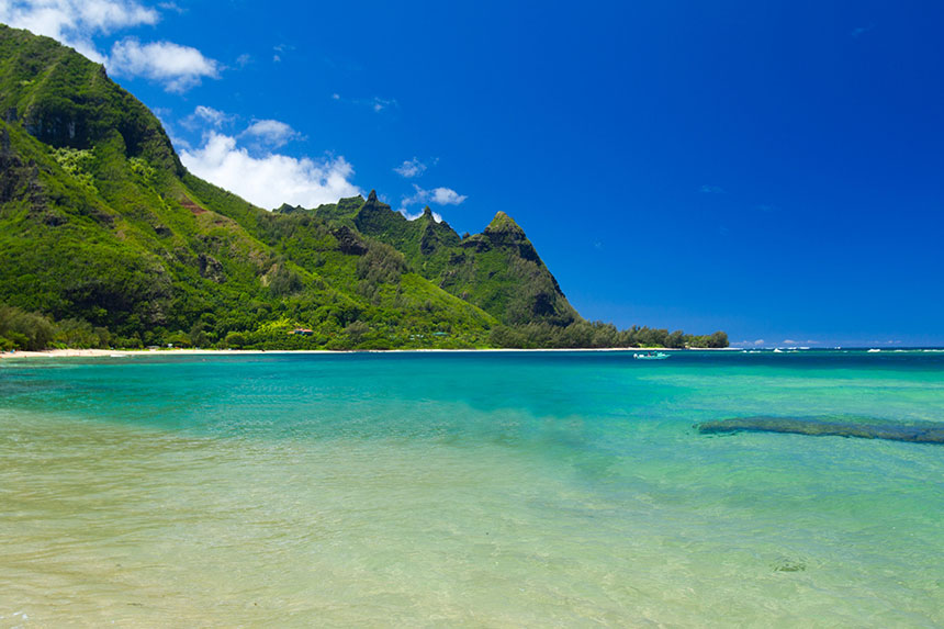 Island Hawaii Wellen Beach